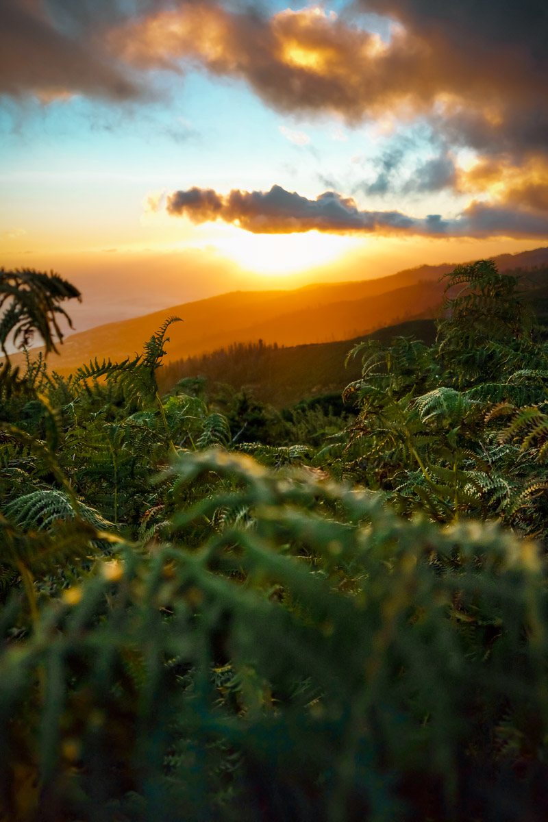 Sunset view near Levada do Risco 2