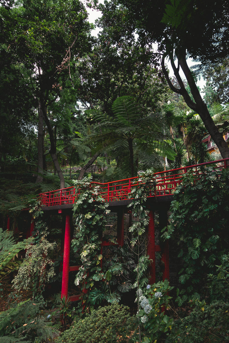 Monte Palace Tropical Garden - bridge